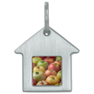 Apples - Ripe & Colorful Pet Name Tag