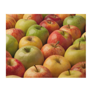 Apples - Ripe & Colorful Wood Wall Art