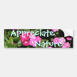 Appreciate Nature Bumper Sticker