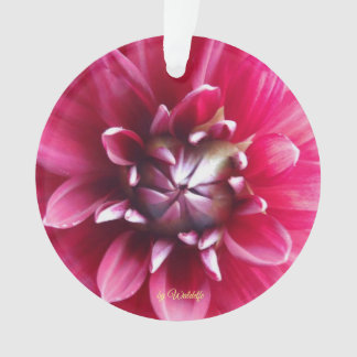 """Approximately ornamentation """"flower and clover ornament"""