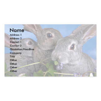 Apricot and Blue Rex Rabbit Business Card