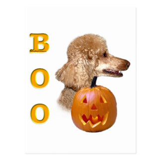 Apricot Coated Poodle Boo Postcard