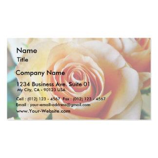 Apricot Colored Rose Closeup Business Card Templates