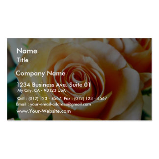 Apricot Colored Rose Closeup Business Cards