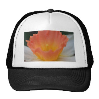 Apricot Daffodil Cap