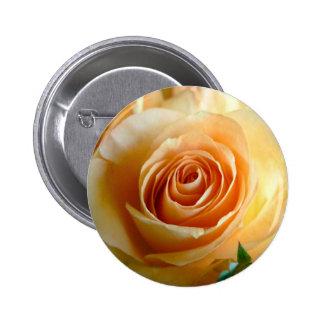 Apricot Rose Pin
