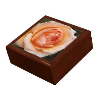Apricot Rose Floral Gift Box