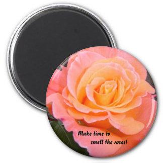 Apricot Rose Magnet