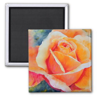 Apricot Square Magnet