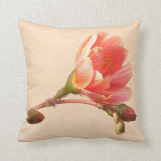 Apricot Sunset Cushion