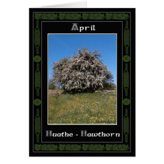 April Birthday Celtic Oracle Divination Card