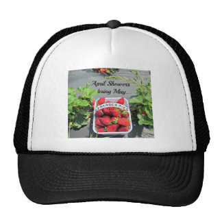 April Showers bring May...STRAWBERRIES! Hats