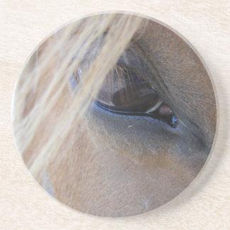 April's Eye Coaster