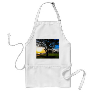 Apron for Cooking
