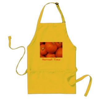 Apron Harvest Time!