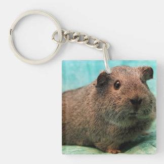 Aqua Guinea Pig Keychain