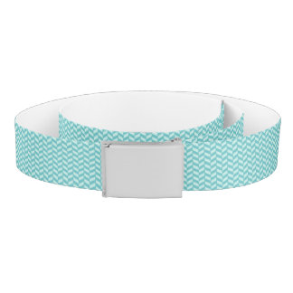 Aqua Herringbone Belt
