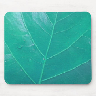 Aqua Leaf Mouse Pad
