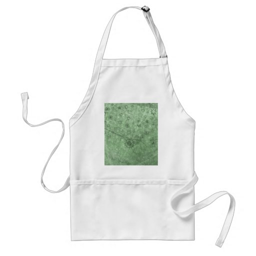 Aqua Retro Flowers and Butterflies Abstract Apron