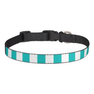 Aqua Vertical Stripes Pet Collar