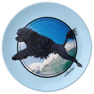 Aquapoise Plate