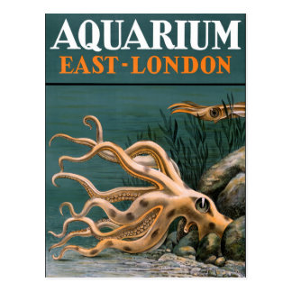 Aquarium Octopus Vintage Poster Restored Postcard