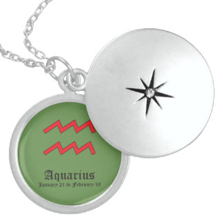 Aquarius zodiac sign sterling silver necklace