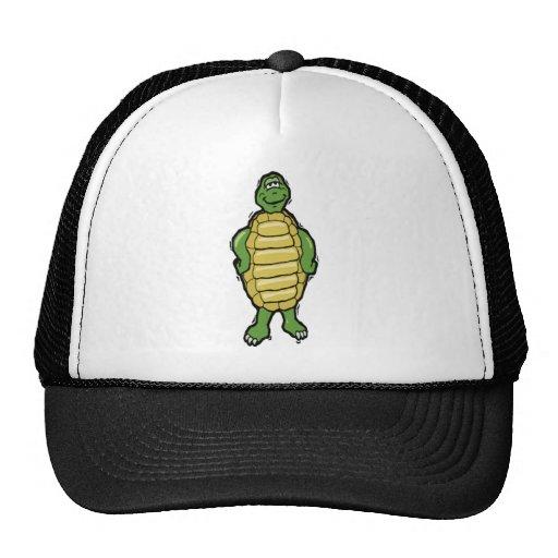 Aquatic Animals Collection Hats