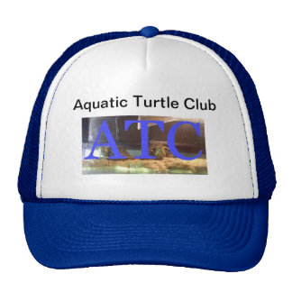 Aquatic Turtle Club Hat