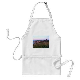 Aquinnah Sunset and Lighthouse Apron