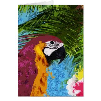 Ara parrot card