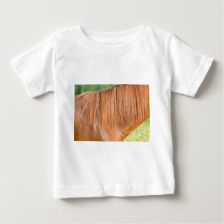 Arabian brown horse in pasture close view of mane baby T-Shirt