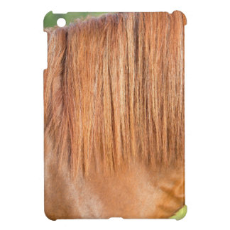 Arabian brown horse in pasture close view of mane iPad mini case