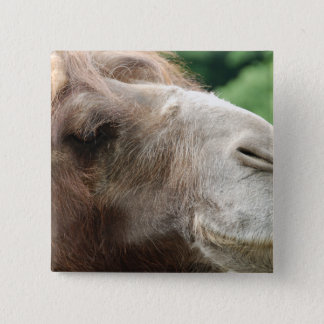 Arabian Camel Button