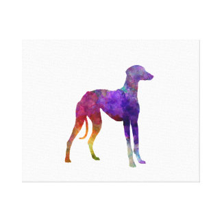 Arabian Greyhound in watercolor Canvas Print