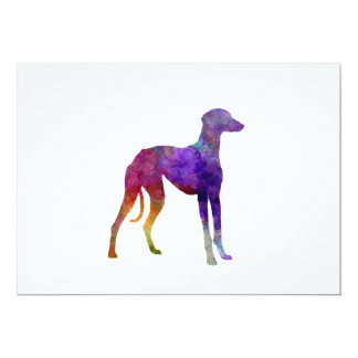 Arabian Greyhound in watercolor Card