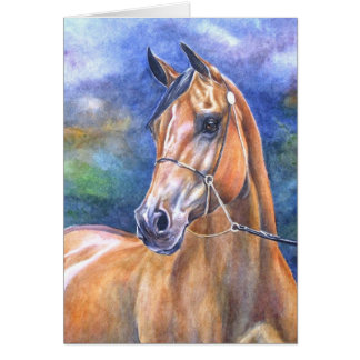 Arabian Horse Card