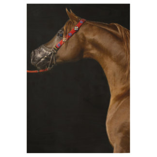 Arabian horse wood poster