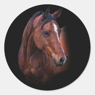 Arabian Mare Classic Round Sticker