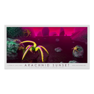 Arachnid Sunset Poster