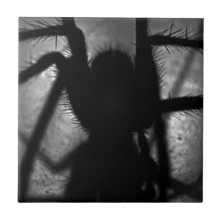 Arachnophobia... Tile