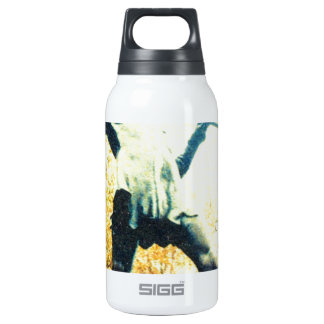 ARADHYA_peterpan.jpg 0.3 Litre Insulated SIGG Thermos Water Bottle
