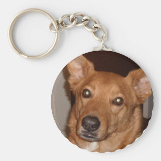 Arag's 'Buddy line' Key Ring