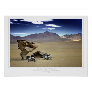 Arbol de Piedra (The Rock Tree) Print