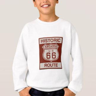 ARCADIA66ok Sweatshirt