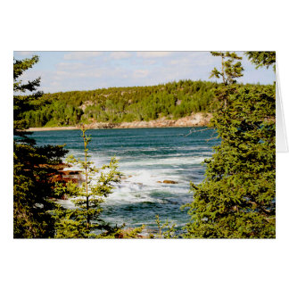 Arcadia National Park Through the Trees Greeting Card