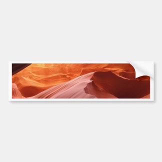 Arch Collection Bumper Sticker