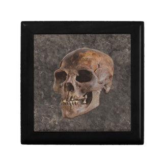 Archaeology II - Skull on Stone-effect Background Gift Box