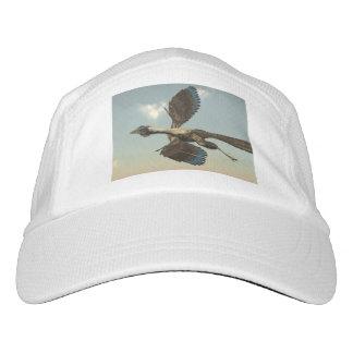 Archaeopteryx birds dinosaurs flying - 3D render Hat