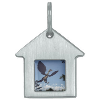 Archaeopteryx birds dinosaurs flying - 3D render Pet Name Tag